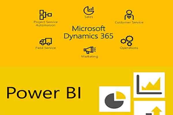 Microsoft Dynamics CRM/365 Development with power BI reports
