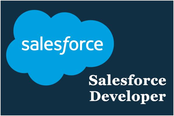 Salesforce Developer Certification Training